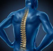 强直性脊柱炎病因