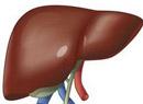 丙肝的临床表现有哪些