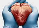 在生活中怎样预防动脉硬化